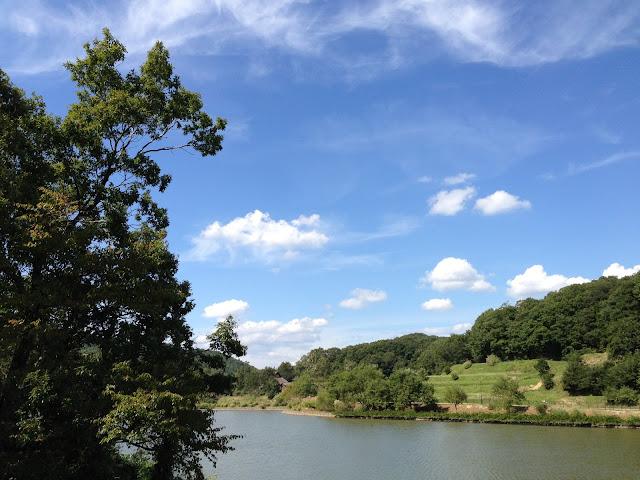 イメージ画像:森と湖
