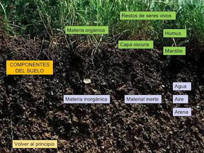 Aulabiogeotoni 2 ctm el suelo for Materiales que forman el suelo