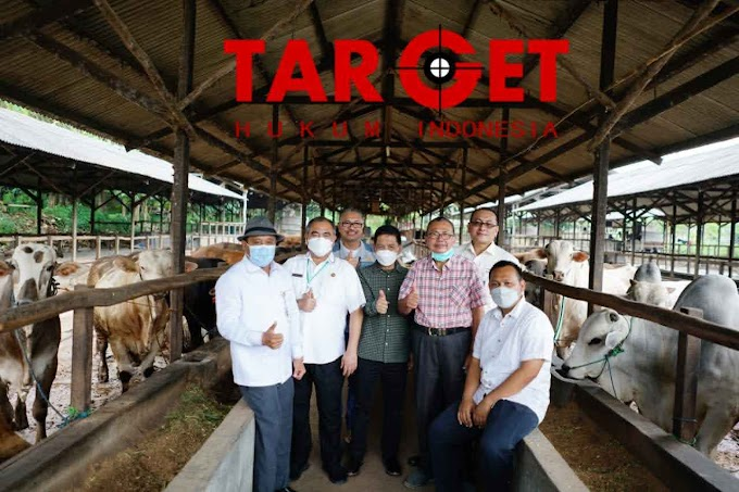 Dampingi Pejabat Kementrian, Safin Sukses Tunjukkan Potensi Pati Amankan Stok Daging Sapi Nasional
