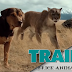 A Dog's Way Home | Primeiro Trailer