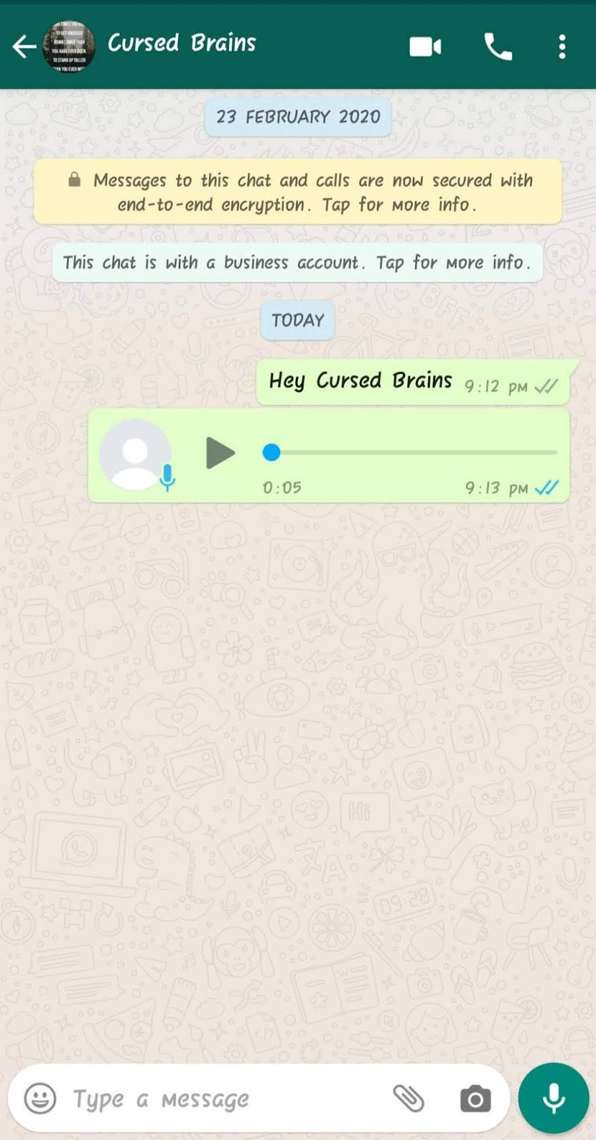 How To Know WhatsApp Message Read -  Voice Message Read In Private - Cursed Brains