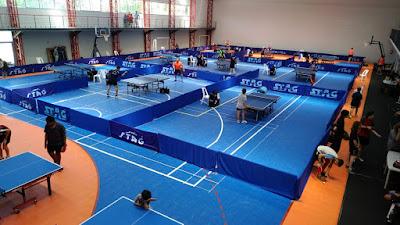 Resultado de imagen de municipio G tenis de mesa