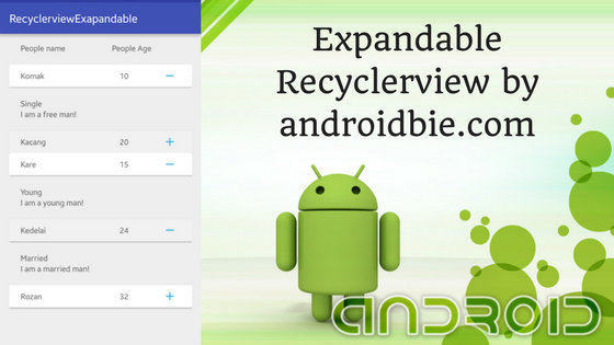 Easy Tutorial Android Expandable RecyclerView - Android Newbie