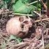 En Moloacán, hallan fosas con osamentas de 3 personas