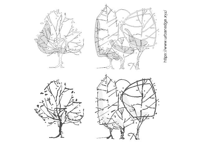 Tree Elevation Freehand Sketch cad blocks download - 4 Dwg Models
