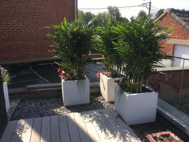 kunstplanten kopen voor bedrijven of particulier prijzen op aanvraag voor buiten binnen hangend of in pot tegen muur met bloemen op terras in de tuin en tegen wand