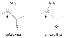cefalexina amoxicilina