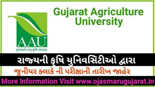 Gujarat Agriculture Universities Junior Clerk Exam Date Notification 2019
