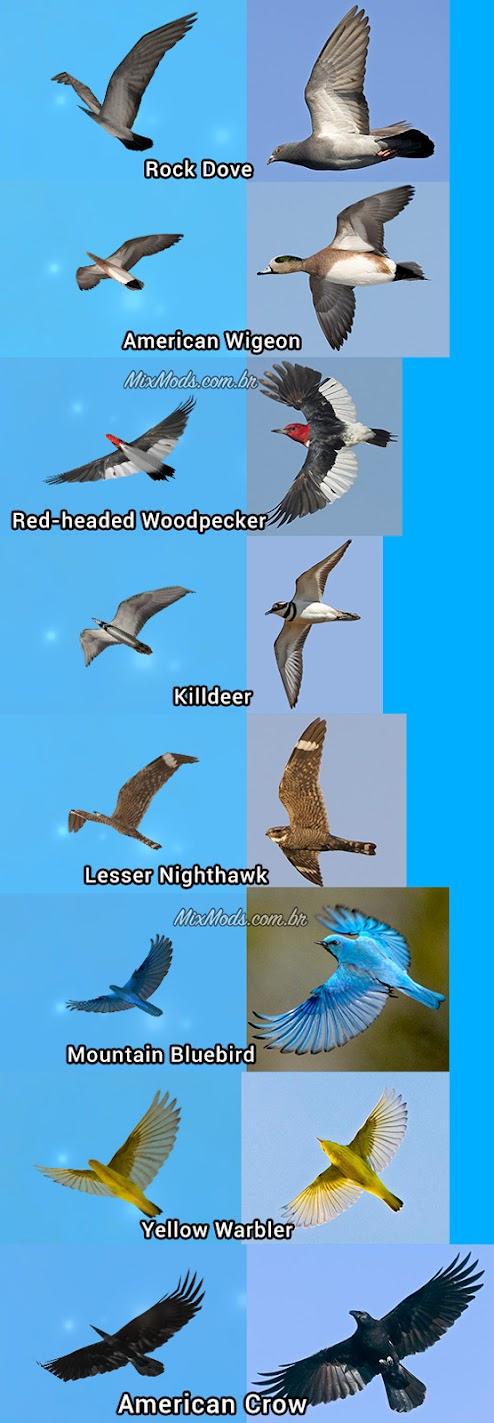 gta sa san mod birds update pássaros hd birds textures texturas