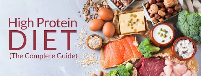 What is High Protein Diet?