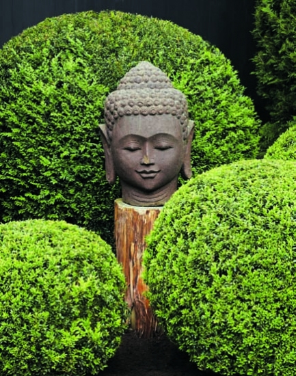 In praise of Buddha Gardens