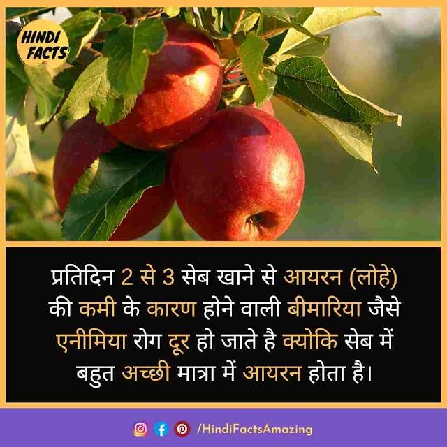 Apple In Hindi - सेब से जुडी जानकारी, फायदे और तथ्य