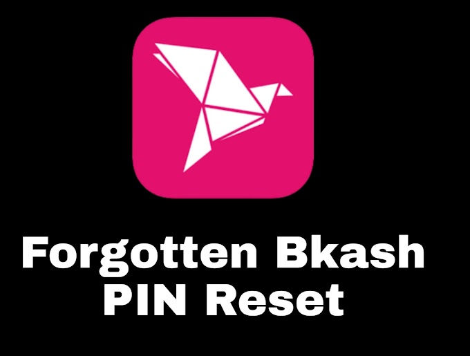 Reset Bkash forgotten PIN   Reset Bkash Block PIN 2020   cyber31bd.com