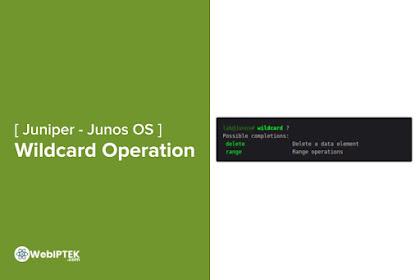 Cara Penggunaan Wildcard Operations di Junos CLI