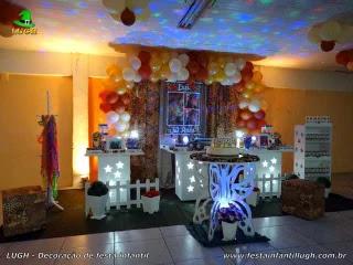 Decoração de aniversário da Oncinha - Festa teen feminina