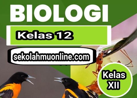 berikut ini kami hidangkan Contoh Soal Penilaian Tengah Semester  40 Soal Pilihan Ganda PTS/UTS Biologi Kelas 12 dan Kunci Jawabannya