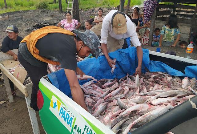 Pescado apreendido em Óbidos é destinado para doação