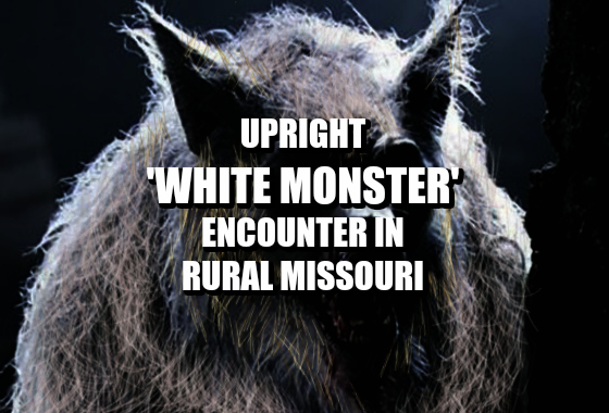 Upright 'White Monster' Encountered in Rural Missouri