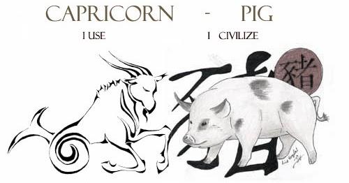 Capricorn Pig Personality Traits   Capricorn Life - Capricorns Rock!