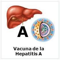 Obat Tradisional Tuntaskan Hepatitis A