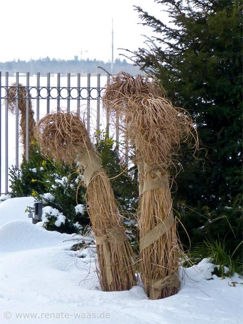 Gartenblog Geniesser Garten Winter Im Garten