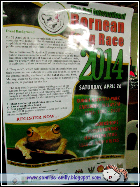 The International Bornean Frog Race 2014, Kuching Sarawak