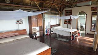 Low price Uganda Mountain Gorilla Tracking (Trekking) and Wildlife Safaris, Chimpanzee & Primates, Adventure Holiday itineraries, Car Rentals / Hire