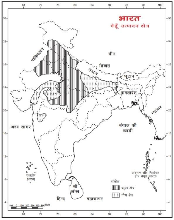 भारत की प्रमुख फसलें, प्रकार,  उत्पादकता, प्रमुख उत्पादक राज्य - Agriculture in India