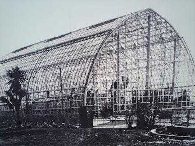 サボテンドーム ときわ公園、植物園もリニューアル。 プラントハンター西畠清順が手がける?