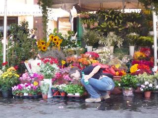 Eu, escolhendo flores no Campo de Fiori