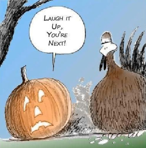 Halloween Jokes for Kids Adults, Funny Puns Meme Images Buzzfeed ...