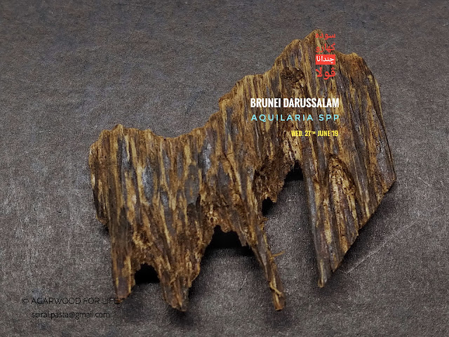 Red Soil Grade of Agarwood from Brunei that suits for burn as incense