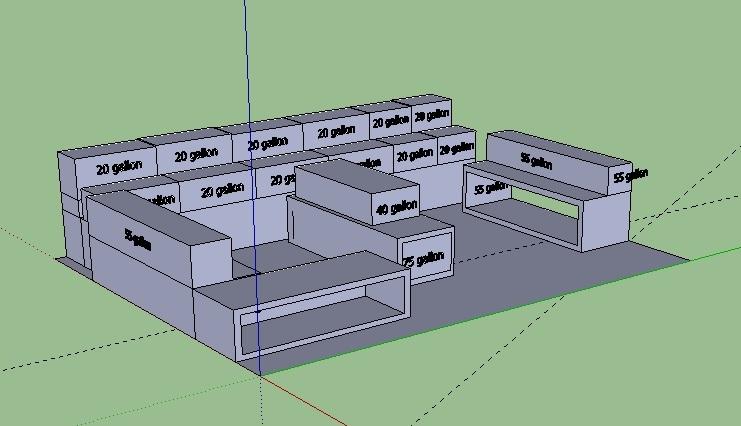 Angelfish Fish Room Design Phase Planning