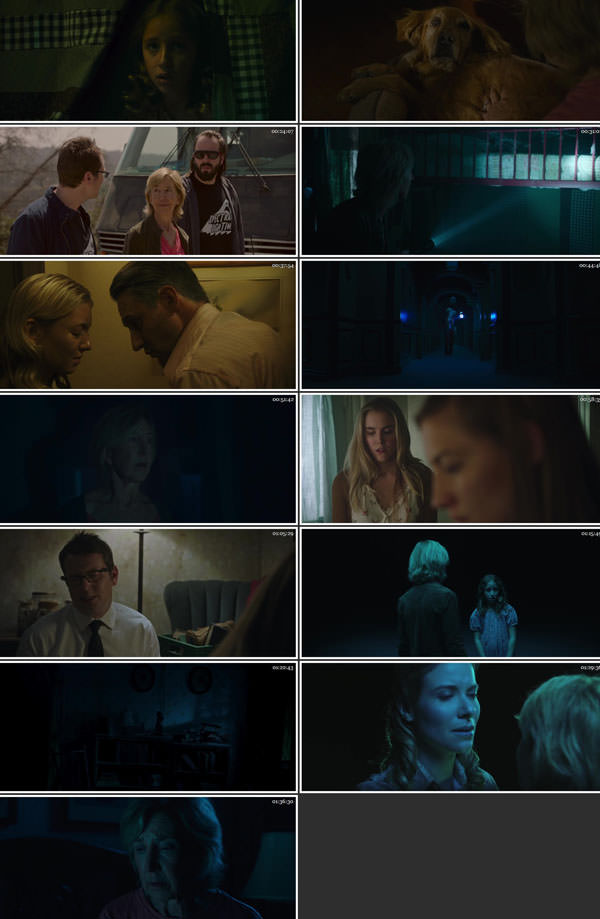 Insidious The Last Key 2018 Dual Audio Hindi