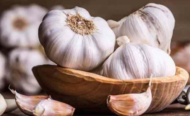 manfaat-bawang-putih-untuk-kesehatan