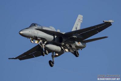 Spanish Hornet replacement