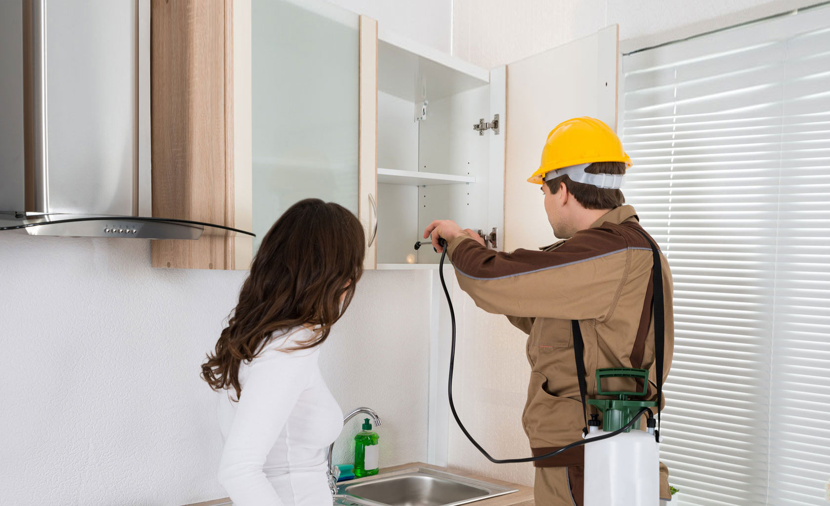 Cara Mudah dan Praktis Basmi Rayap di Rumah