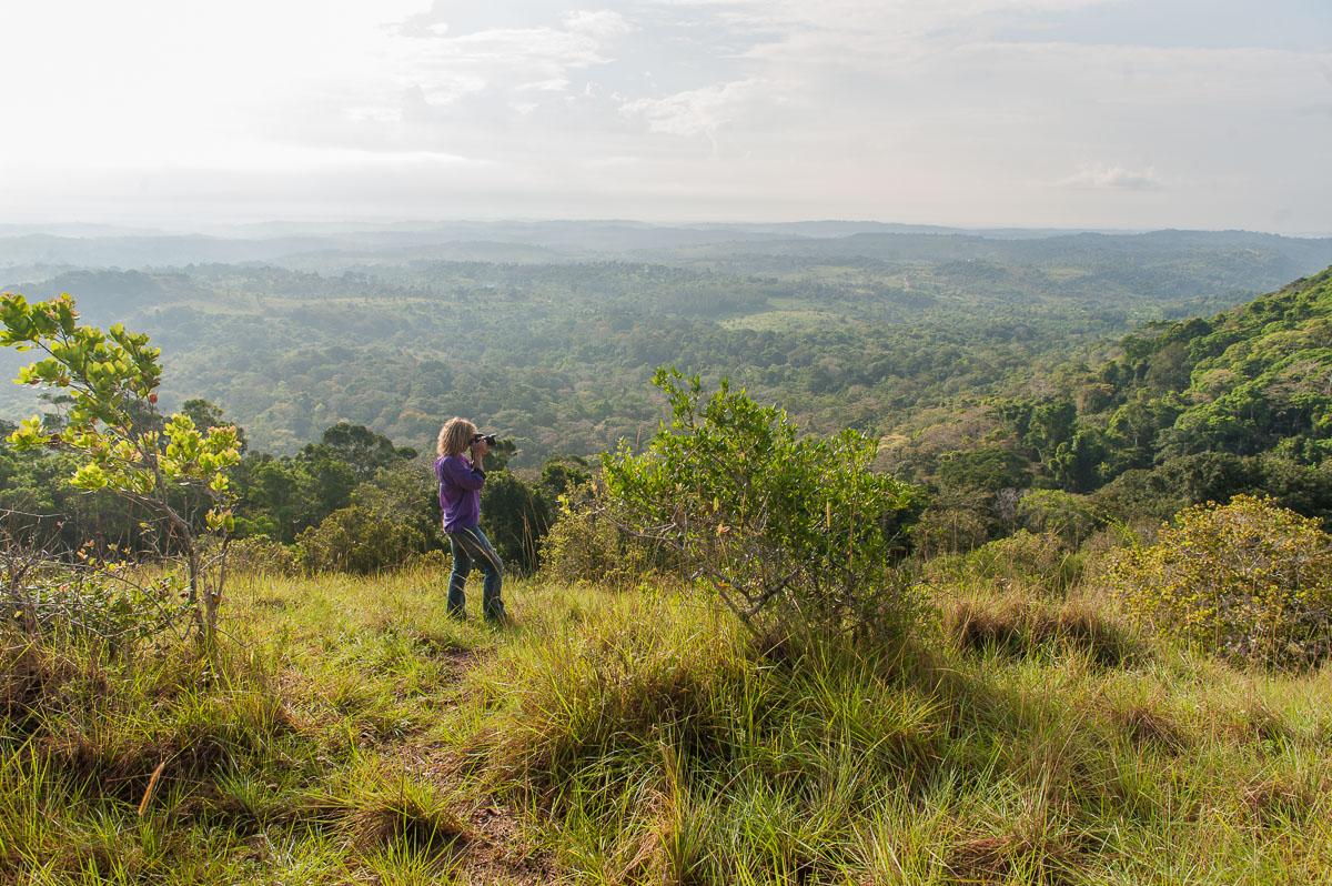 Shimba Hills, Kenia, Kenya, Reisen, Travel, Nature