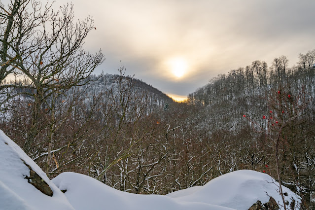 Winterwandern in Bad Harzburg | Kleiner und Großer Burgberg und Besinnungsweg | Baumschwebebahn | Wandern im Harz 04