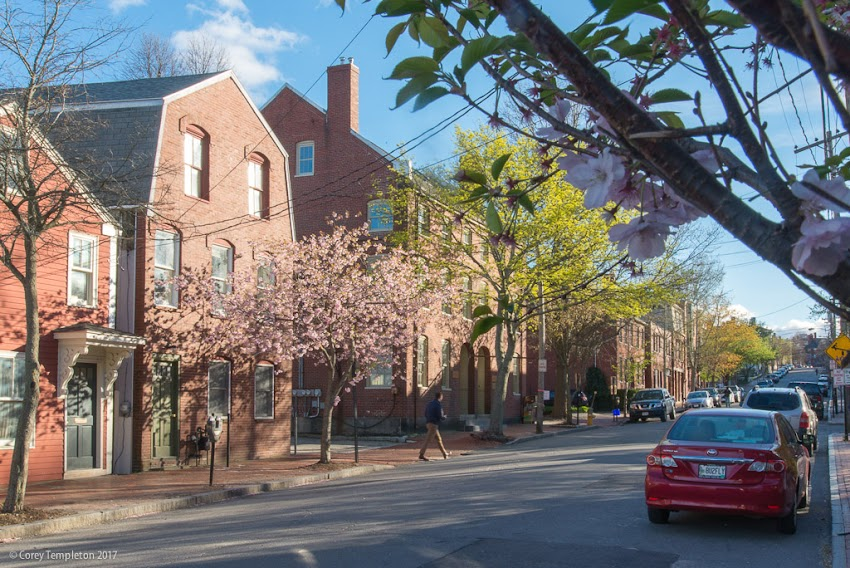 Portland, Maine USA May 2017 photo by Corey Templeton. Another view from Pleasant Street, looking westward this time. The afternoon light hitting the fresh leaves has an appealing look.