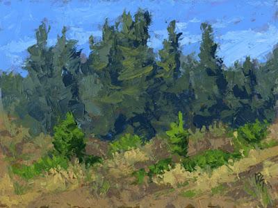 painting art knife nature pine evergreen trees