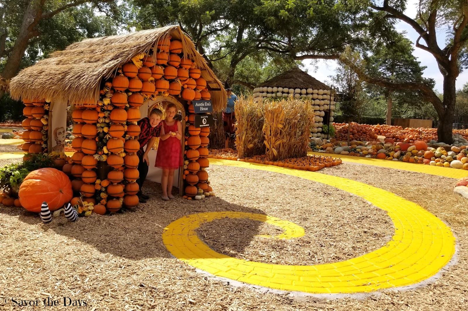 Savor The Days: Autumn at the Arboretum {Family Fun in Dallas}