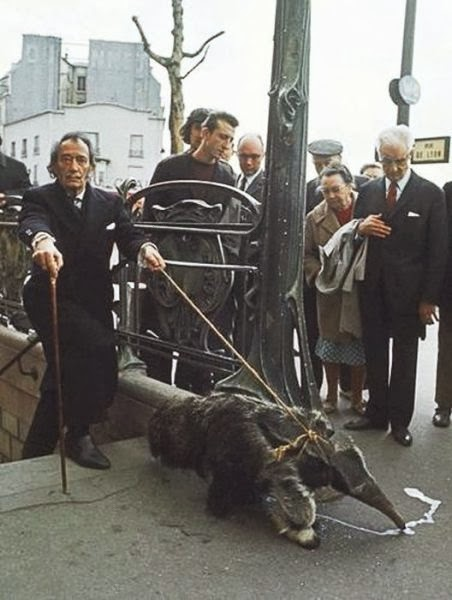 Salvador dali and his Anteater