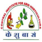 CIAH Recruitment 2019 04 Young Professional - 1 Posts