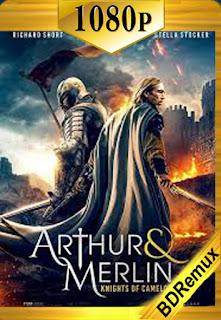 Arturo y Merlin: Caballeros de Camelot (2020) [1080p BD REMUX] [Castellano-Inglés] [LaPipiotaHD]