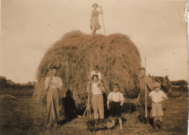 Making hay in the 1930s