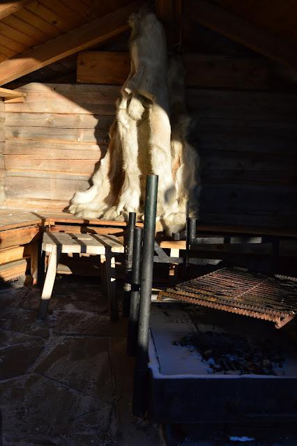 matkakertomus, Lappi, Pallas, talvi