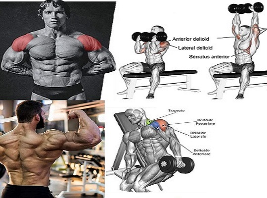 Boulder Shoulders: Tips And The Top Shoulder Workout