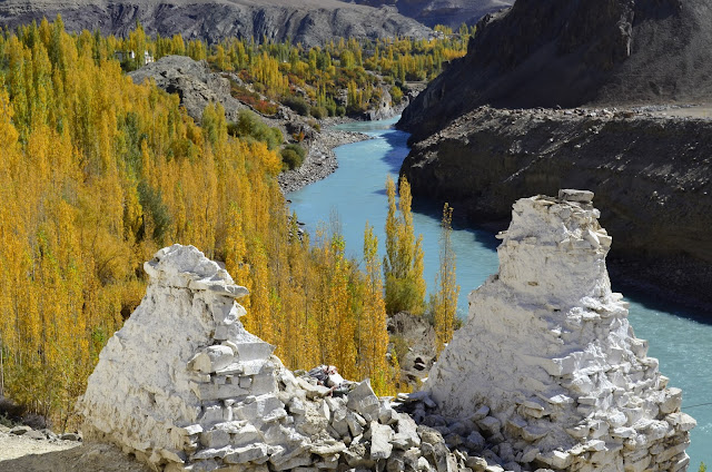 Fall leaves, brilliant blue Indus River, Ladakh