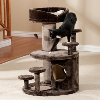 Casa para gato con juguetes